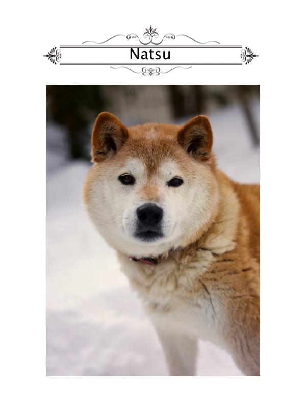 Natsu4