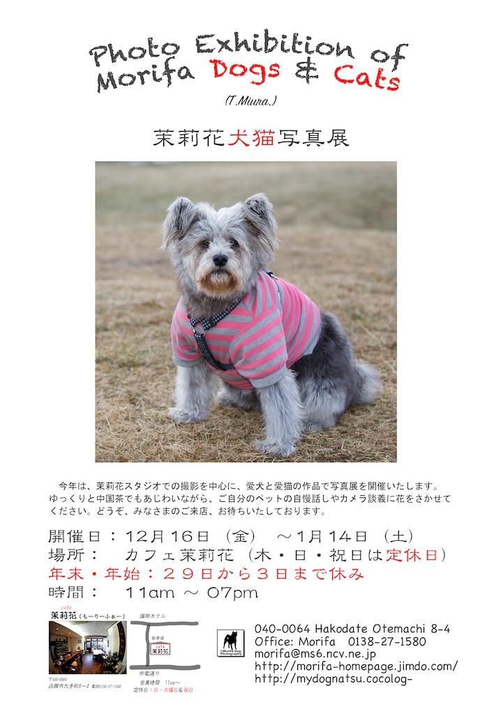 2016dog
